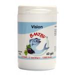 COMPLEXE-VIsion-BMTBV-60-gel-638x1024